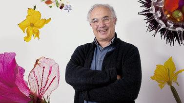 Fotografía gastronómica y retoque con Photoshop. Un curso de Fotografía y Vídeo de Francesc Guillamet Ferran