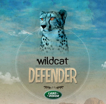 WILDCAT DEFENDER. A Design, and Advertising project by Nacho Gallego         - 11.01.2011