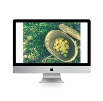 """""""HUERTANECO"""". Un proyecto de Diseño y Fotografía de Tanya VONDEE - 10-07-2012"""