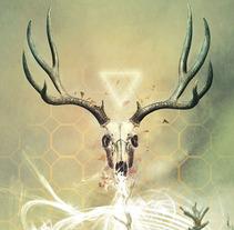 Ecosistema Digital . Un proyecto de Diseño, Ilustración y Fotografía de Miguel Castro         - 05.12.2012