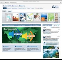 Sustainability Disclosure Database. A Design, Software Development&IT project by Alberto Cerutti         - 02.10.2013