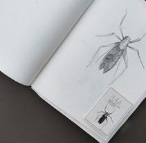 Festival Plaga (2013). Un proyecto de Diseño de Blai Marginedas Sayós         - 08.10.2013