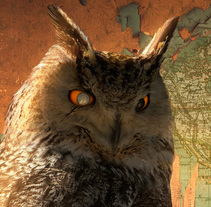 King Owl. A Photograph&Illustration project by Carles Marsal - 08.18.2014