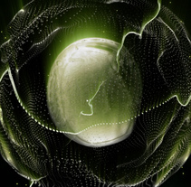 Trapcode Form - Toxic. A Motion Graphics, Animation, and Post-Production project by Laura Garrido         - 12.01.2012