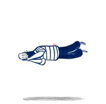 ¿Qué hace un hombre con una sardina en la cabeza?. Un proyecto de Ilustración de Guridi         - 02.03.2015