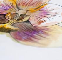 Cabeza de Orquídea. A Illustration, Film, Video, TV, Animation, Fine Art, Collage, and Film project by Andrea González García         - 10.01.2015