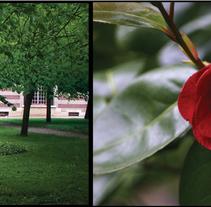 Manoir des Villers /// #autumn #france #normandie. A Photograph project by Silvia Miralles Badia         - 18.09.2009