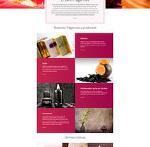 Ersand. Un proyecto de Diseño Web de La Teva Web Diseño Web  - 06-01-2016