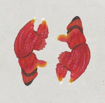 Infografía Cangrejo de las Islas Galápagos. Um projeto de Ilustração e Design de informação de Inmaculada Jiménez - 27-05-2015