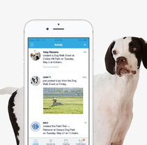 Dogways app. Un proyecto de UI / UX y Diseño interactivo de Gemma Busquets - 01-05-2016