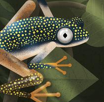 Rana de Madasgacar ilustración. Un proyecto de Ilustración de David Comerón - 26-06-2017