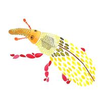 Ilustraciones Palmito. A Illustration project by María León         - 03.11.2015