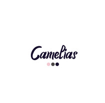 Camelias ReBrand. A Design, Advertising, Br, ing, Identit, Creative Consulting, Design Management, Editorial Design, Fashion, Graphic Design, Interactive Design, Marketing, Product Design, Street Art, Naming, Production, and Pattern design project by Crow  - 13-11-2017