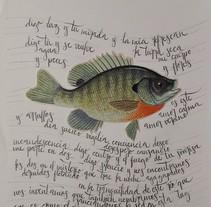 Caligrafía. Um projeto de Lettering de Natalia Calao         - 30.11.2017