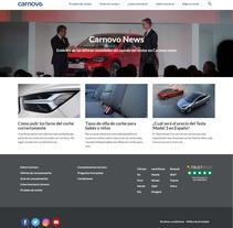 Carnovo Blog. A Web Development project by Sara Row         - 01.11.2016