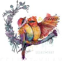 Aves. Um projeto de Ilustração de Selket Yhay          - 10.01.2018