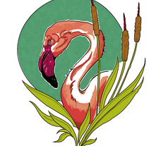 Flamenco. Un proyecto de Diseño, Ilustración, Bellas Artes, Diseño gráfico e Ilustración vectorial de Sandra Valls         - 16.02.2018